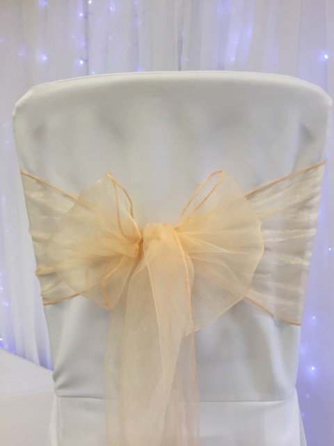 Peach organza. Hire price £1. Replacement value £3 each