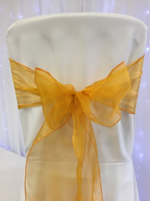 Tangerine organza. Hire price £1. Replacement value £3 each