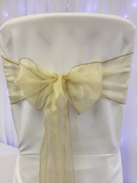 Champagne organza. Hire price £1. Replacement value £3 each