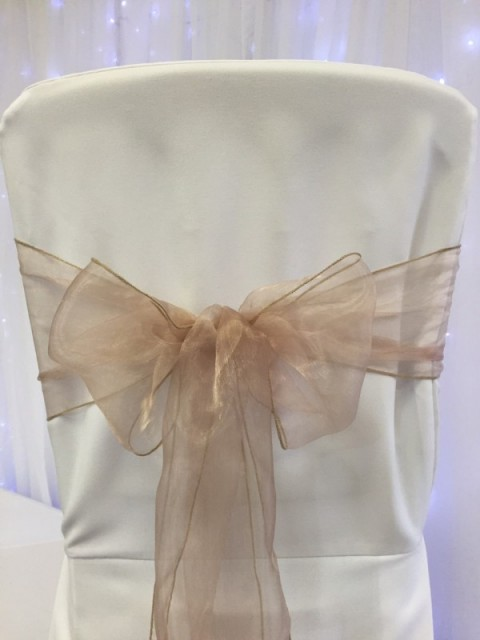 Nude organza. Hire price £1. Replacement value £3 each.
