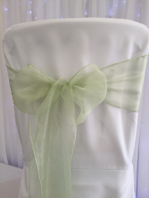 Apple green organza. Hire price £1. Replacement value £3 each.