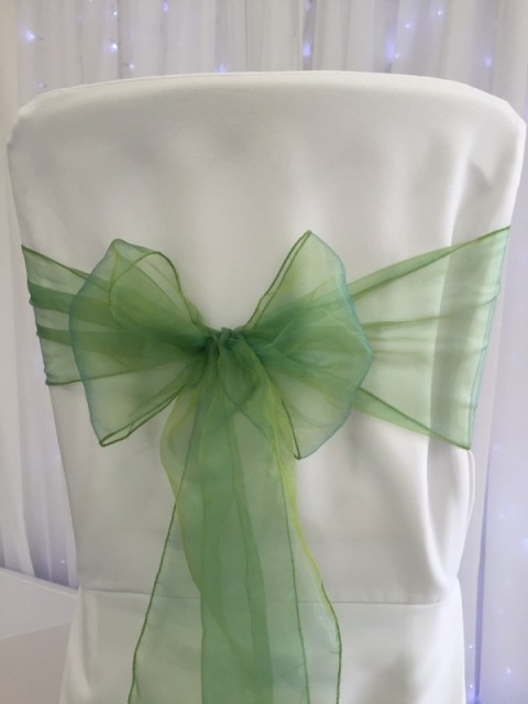 Willow green organza. Hire price £1. Replacement value £3 each.