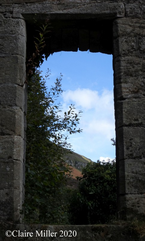 Photo inspiration - What do you see out of this window?