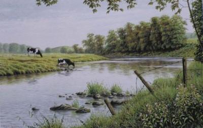 River Ribble at Winckley