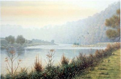 River Ribble at Mitton