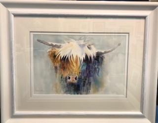 Thomas Highland Cow