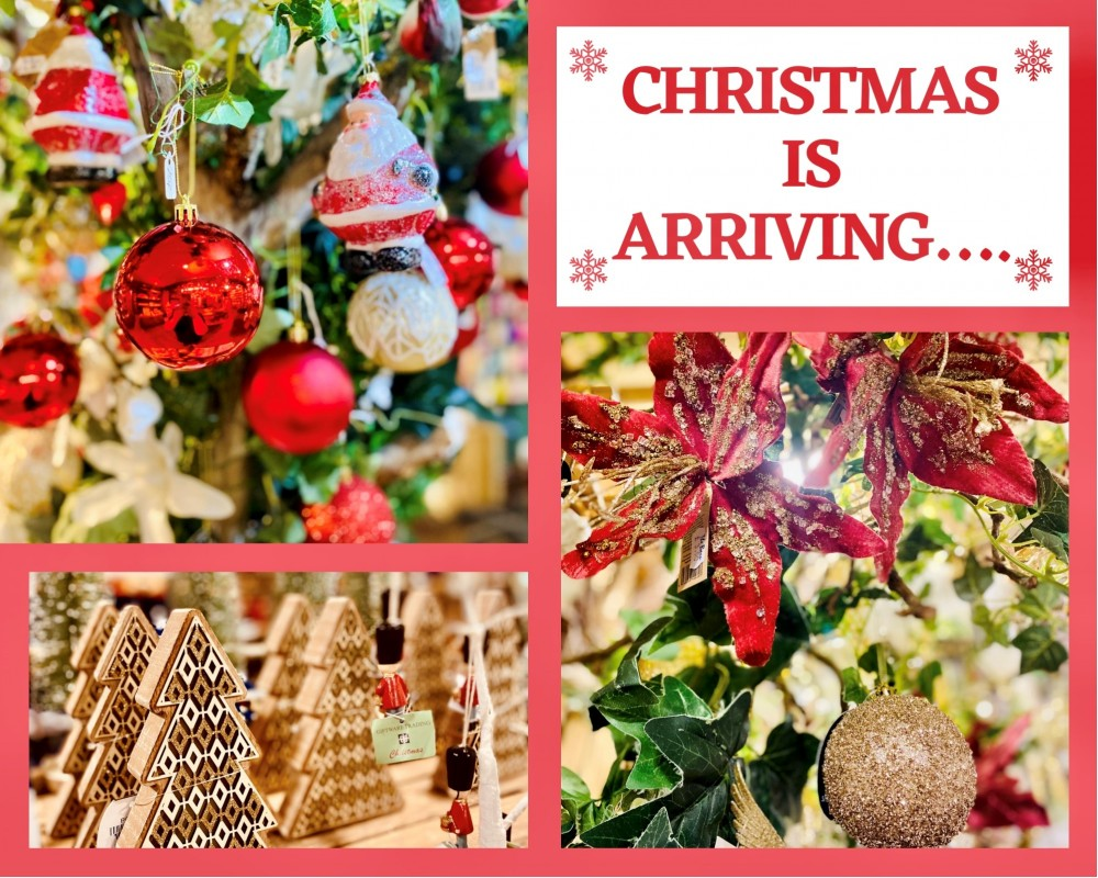 Christmas stock now arriving!