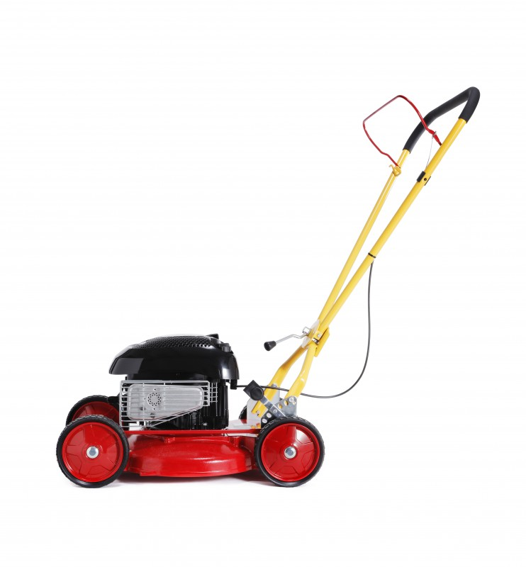 Small Lawnmower